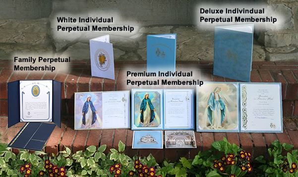 AMM - Perpetual Memberships